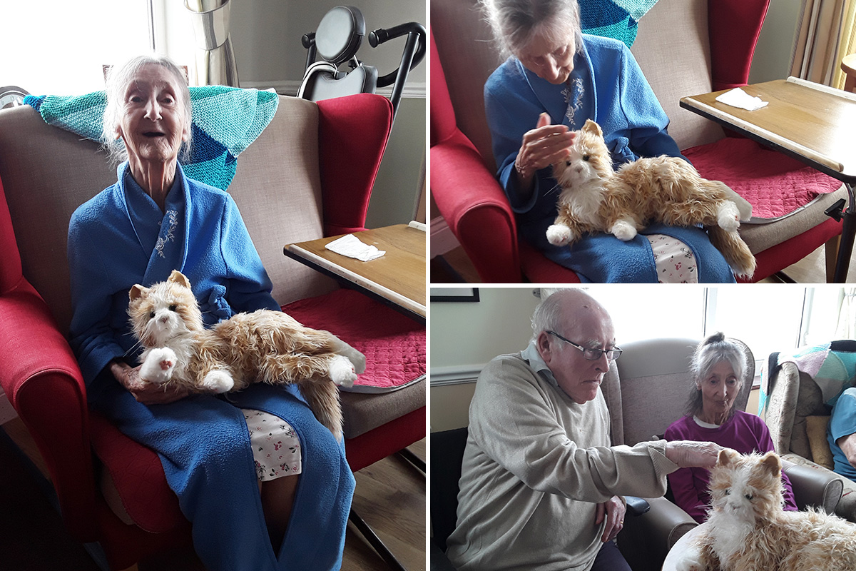 Cuddles with Boo at Silverpoint Court Residential Care Home